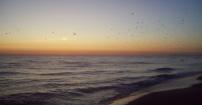 Wschód słońca .