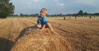 Syn na polu